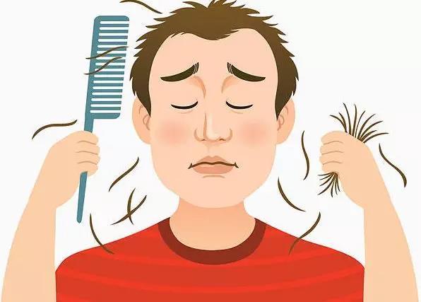脱发的主要原因