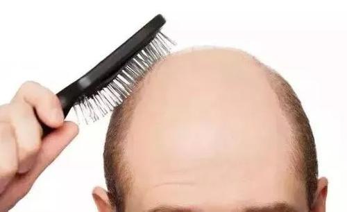 什么养发食物能达到防止脱发的功效