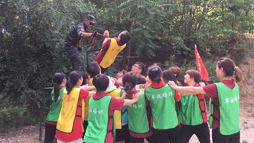 岳灵河北加盟团队,为更专业而学习