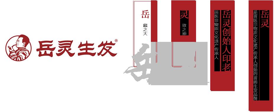 岳灵生发成立于1997年